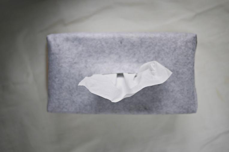 project 001 mooncake box 006