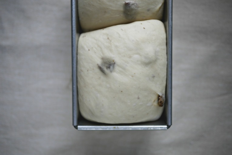 natural-starter-raisin-loaf-010