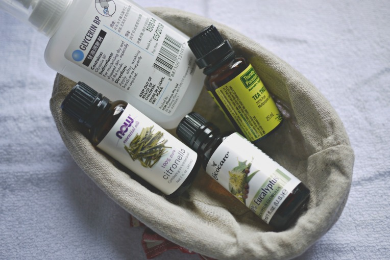 June Holiday Activities + DIY Natural Insect Repellent // Mono + Co
